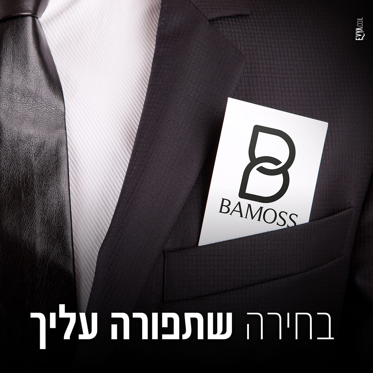 bamoss-elections